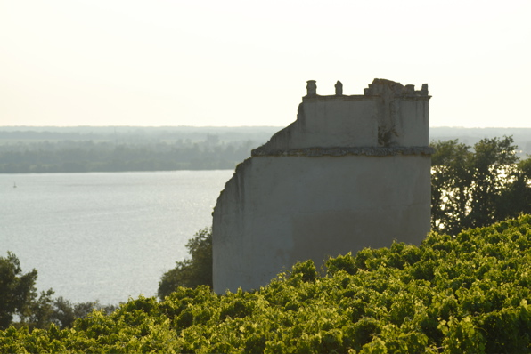 01848bayonchateaueyquempige.jpg